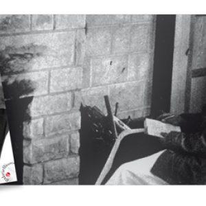 """Thomas Merton - thomas merton semi di contemplazione - thomas merton libri - autore del libro """"Diario Asiatico"""", casa editrice Gabrielli Editori Verona -"""